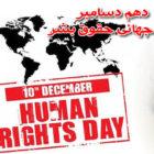 ۱۰ دسامبر روز جهانی حقوق بشر – دستکم ۲۵۵ اعدام در ایران تنها در یک سال