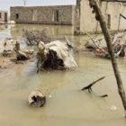 سیل در سیستان و بلوچستان در پی سیل بیکفایتی حکومت