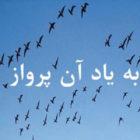 روی جلد کتاب «به یاد آن پرواز، زندگی و مرگ علیرضا اکبری شاندیز»، ناشر: آیدا / آلمان، ۲۰۲۱، بهمن ۱۳۹۹