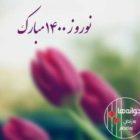 نوروز ۱۴۰۰ بر همه هموطنان خجسته و مبارک باد