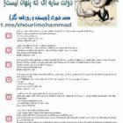 پروژه ی جیغ زنی در سازماندهی مخالفین؛ دولت سایه ای که پنهان نیست! محمد شوری (نویسنده و روزنامه نگار)